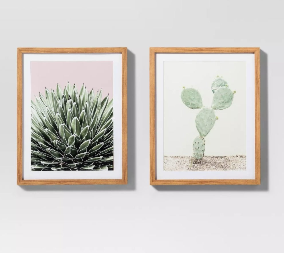 The framed prints, one close-up and one landscape, against a grey wall