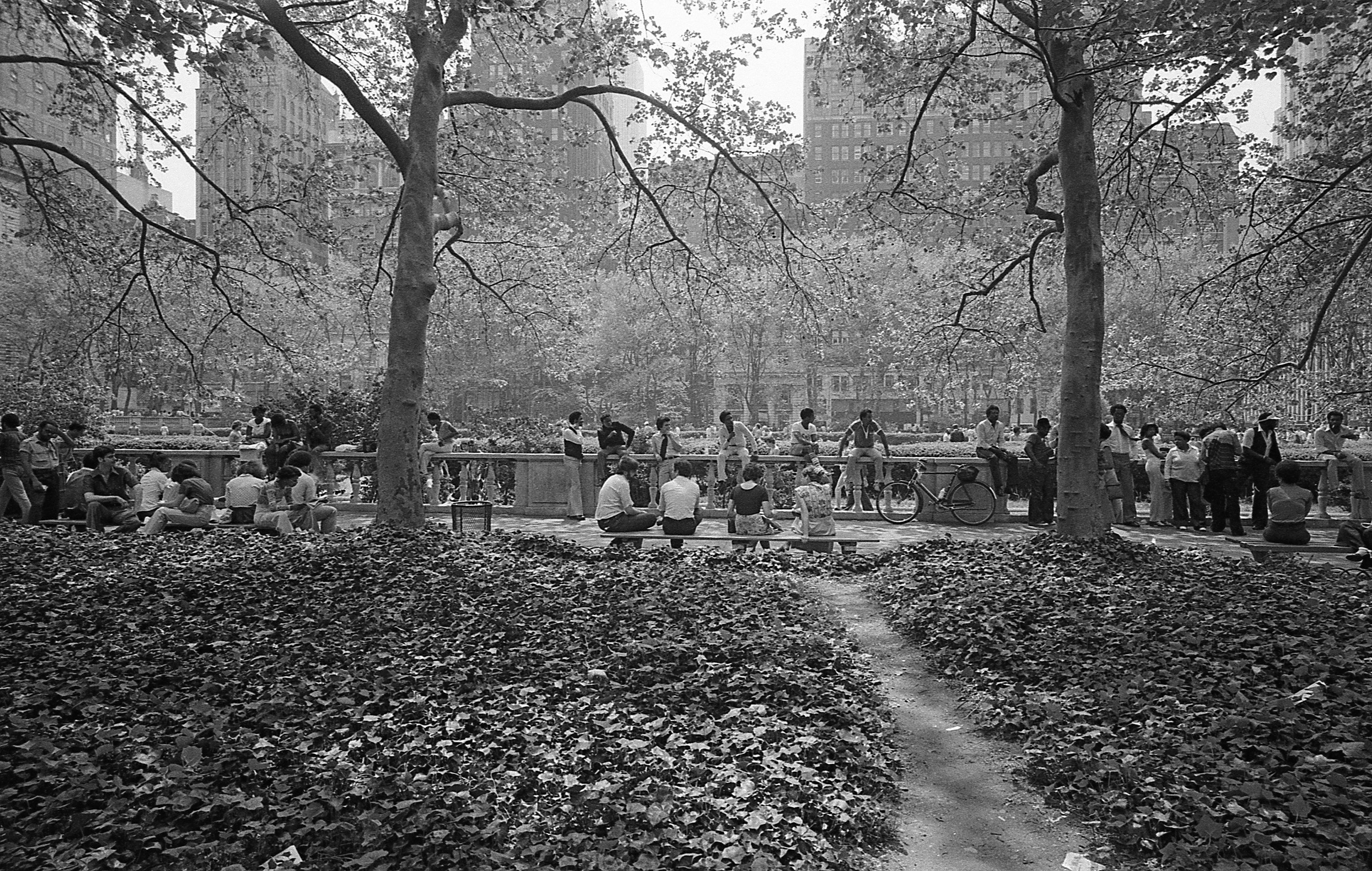 People sitting outside in a park with ivy and a path running leading toward them
