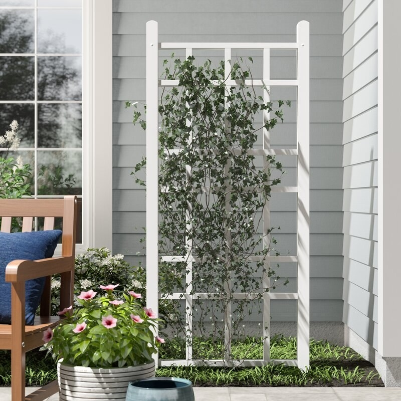 rectangular vertical PVC white garden trellis in a garden bed with vines trained up it