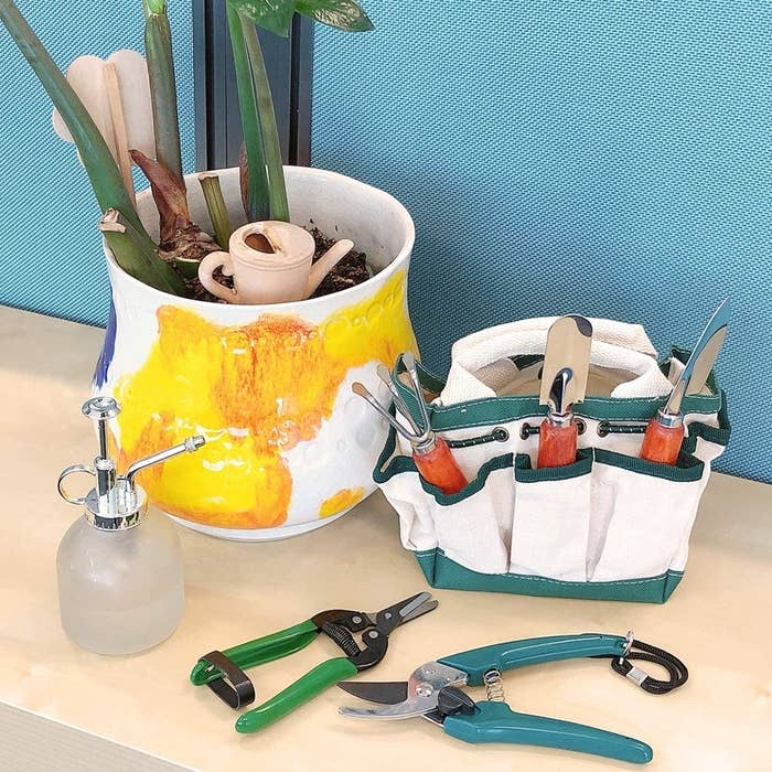 A gardening kit neatly arranged in the carrying bag