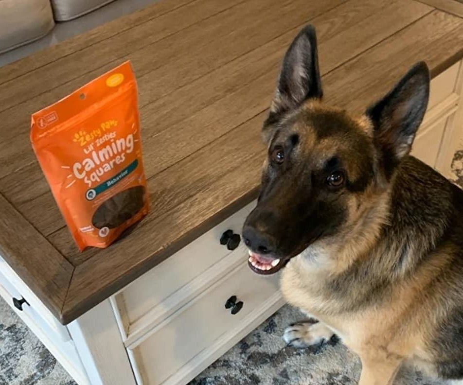 reviewer's German Shepard grinning next to a bag of the calming squares
