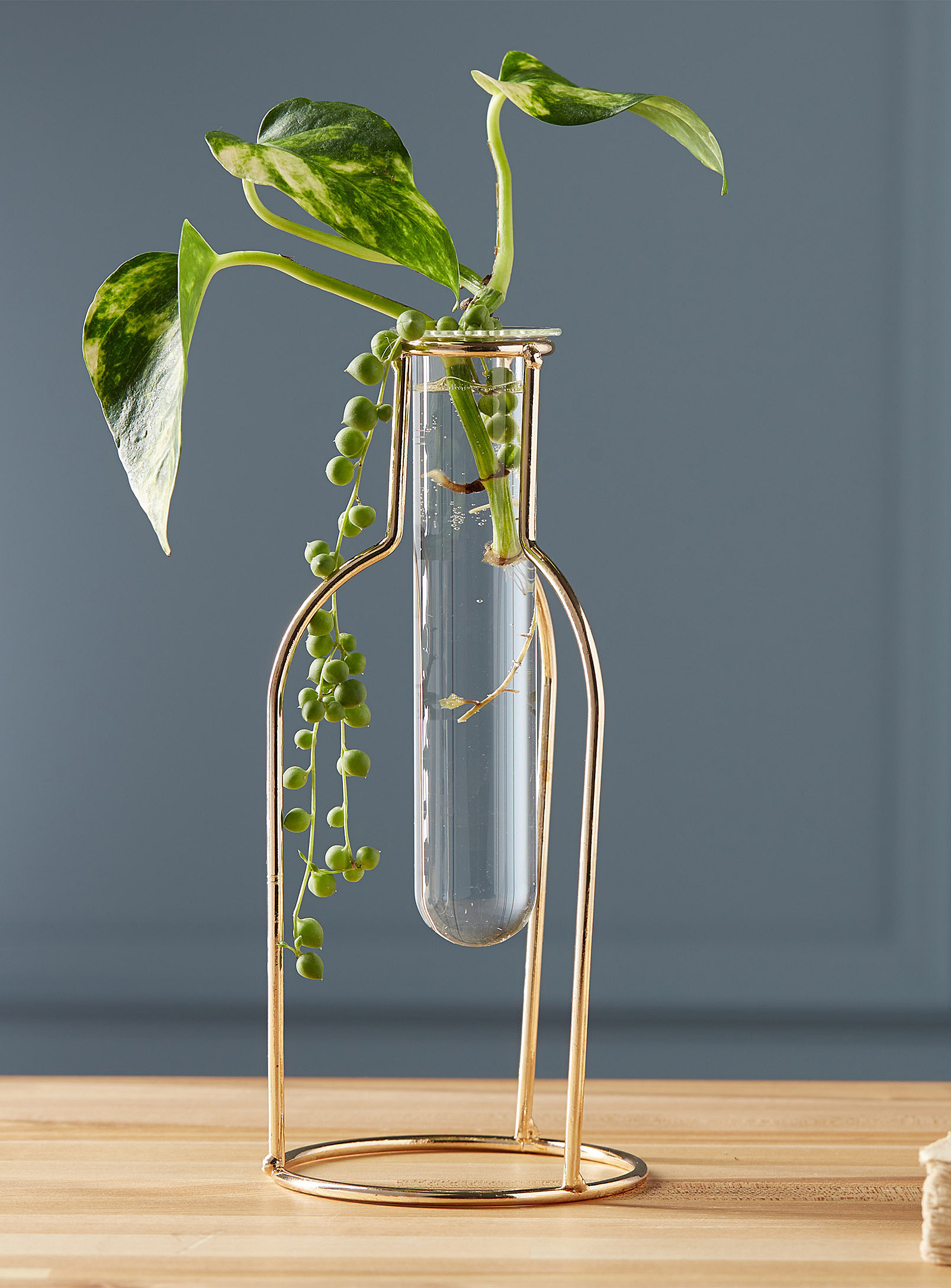A glass vial vase in a gold wire stand