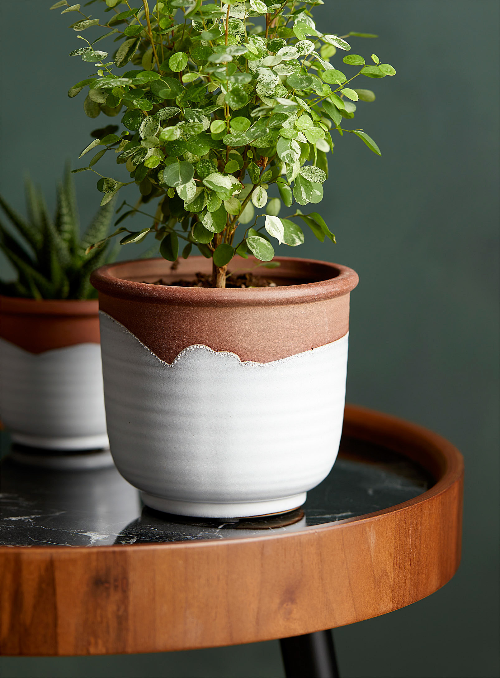 A terracotta planter on a circular side table