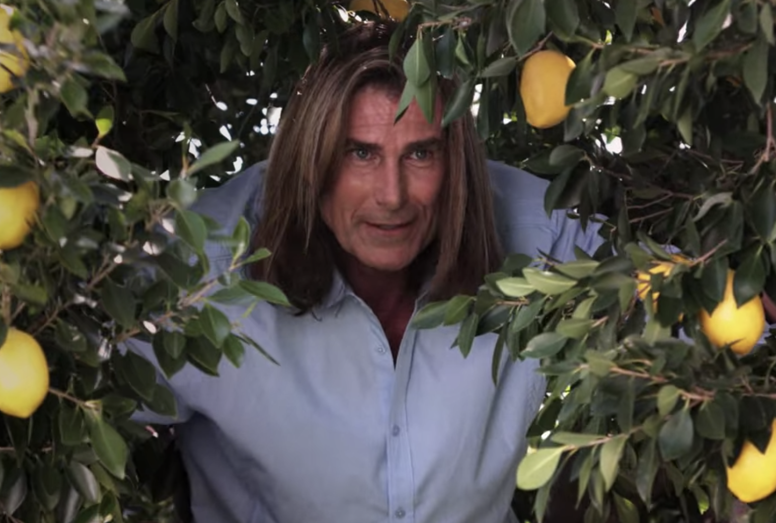 Fabio hiding in a lemon tree.