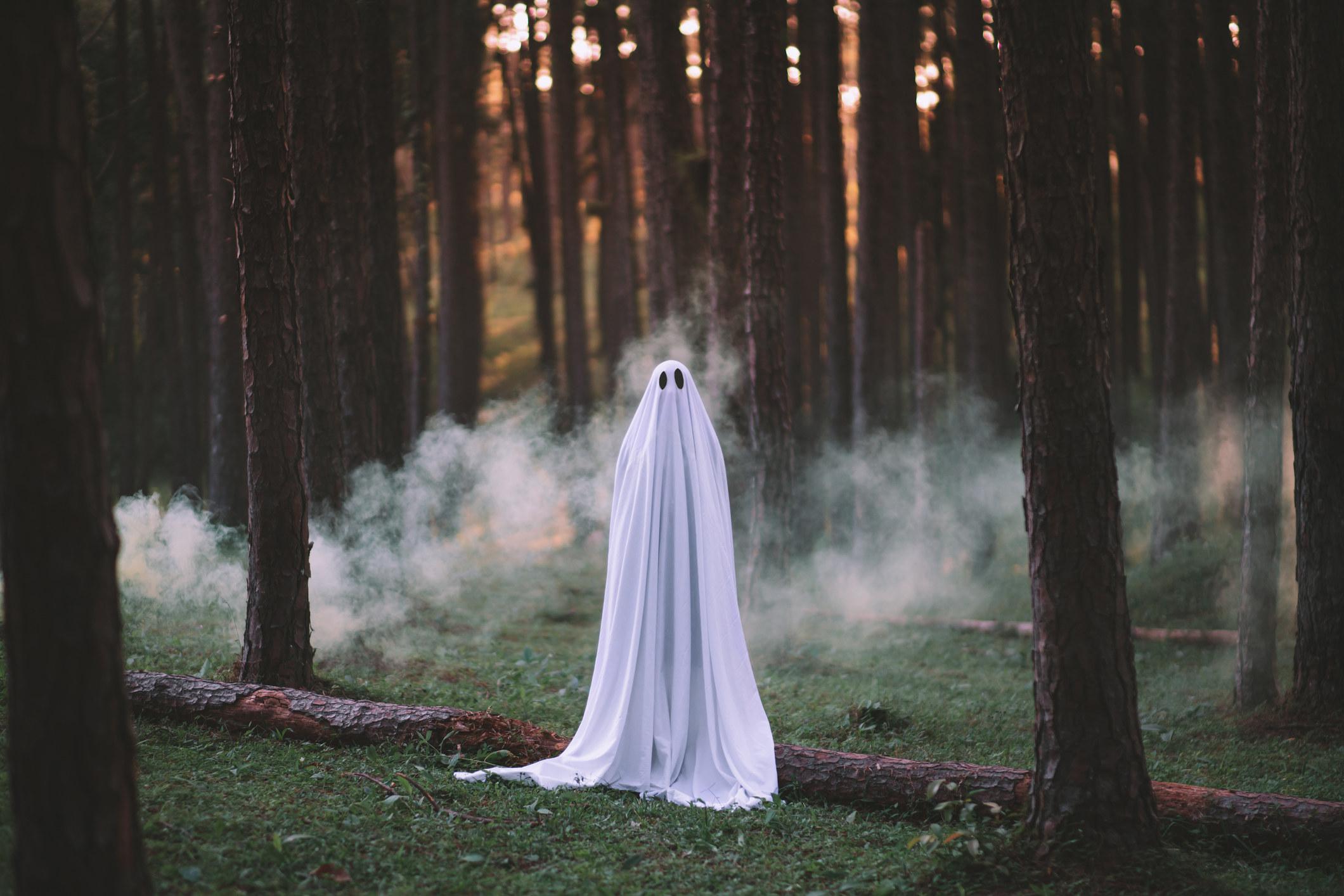 A sheet ghost