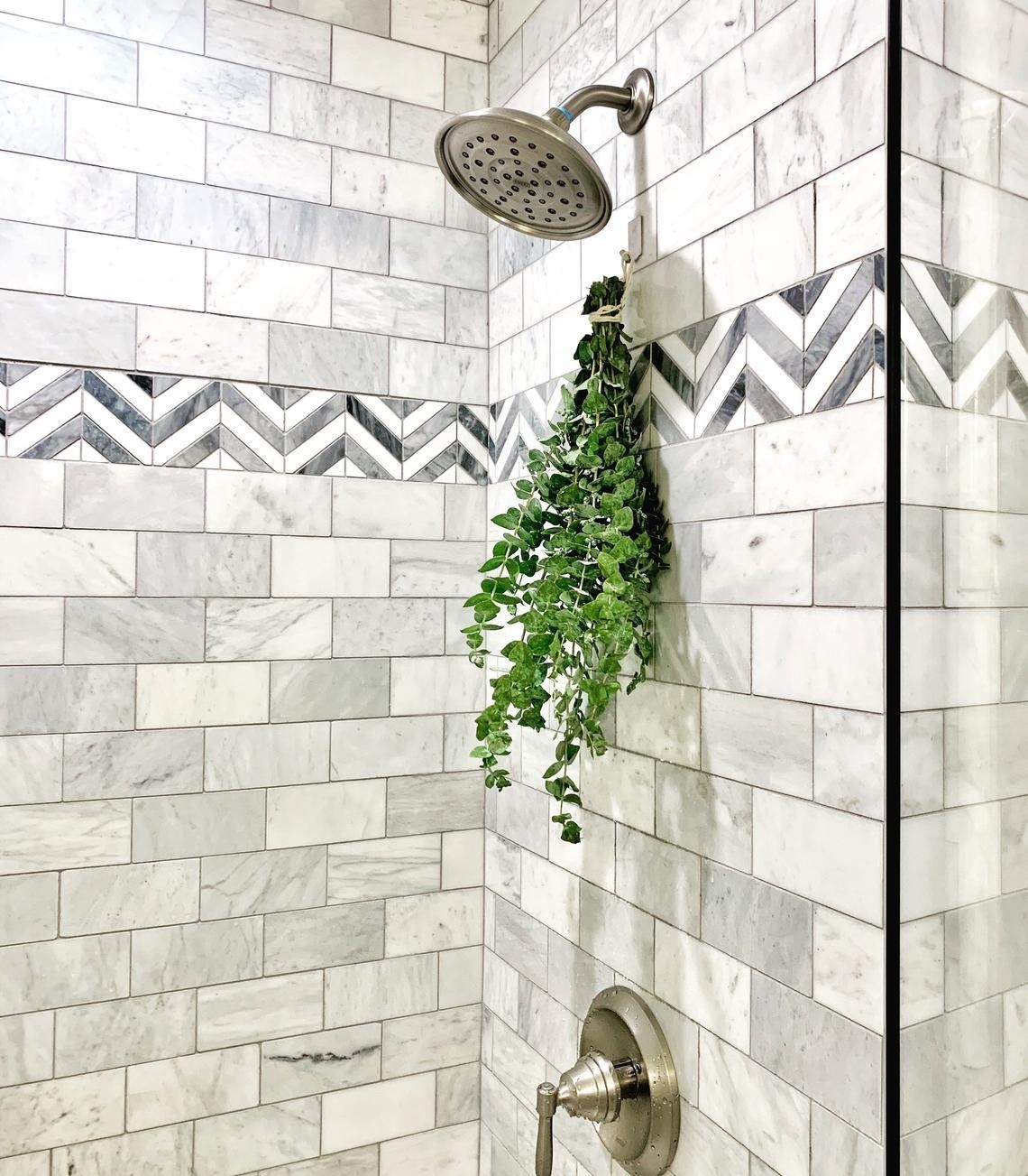 green bundle of eucalyptus stems hanging in a shower