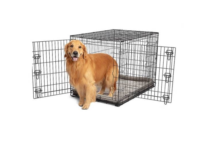 The wire dog crate