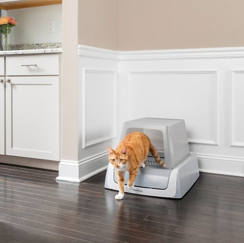 The self cleaning litter box with a cat coming out of it