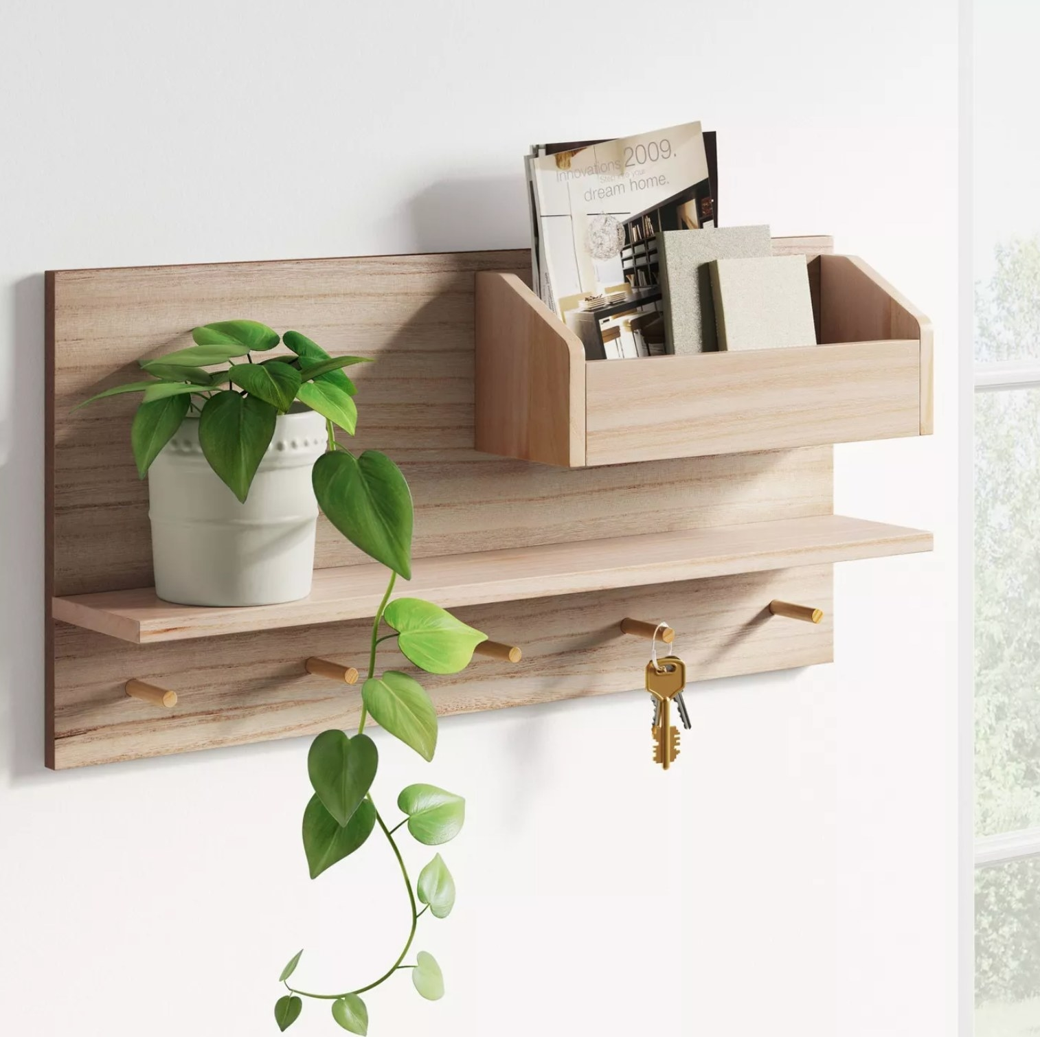 The organizer with keys, a plant, and books in an entryway