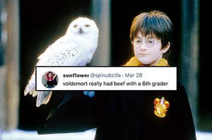 "A young Harry Potter holds his owl with a superimposed tweet reading ""voldemort really had beef with a 6th grader"""