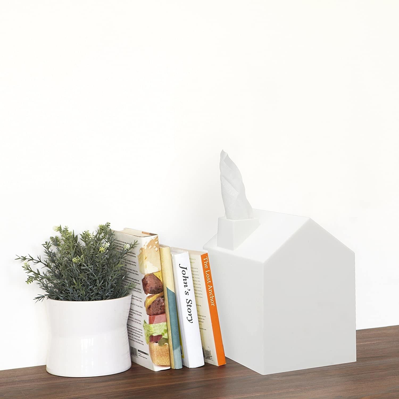 the tissue box next to books