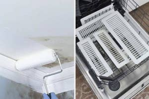paint roller going over mold; vents in lower rack of dishwasher