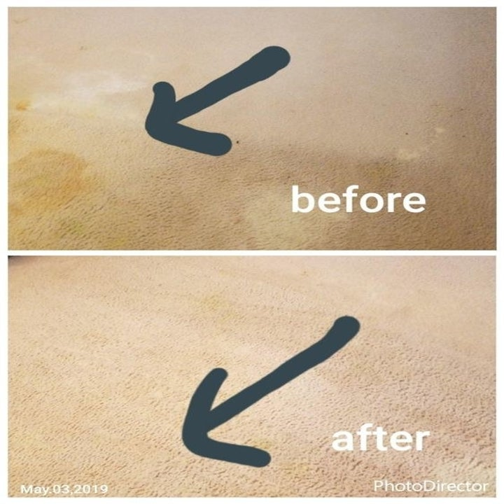 Reviewer's before and after of pet stained-rug and then clean rug
