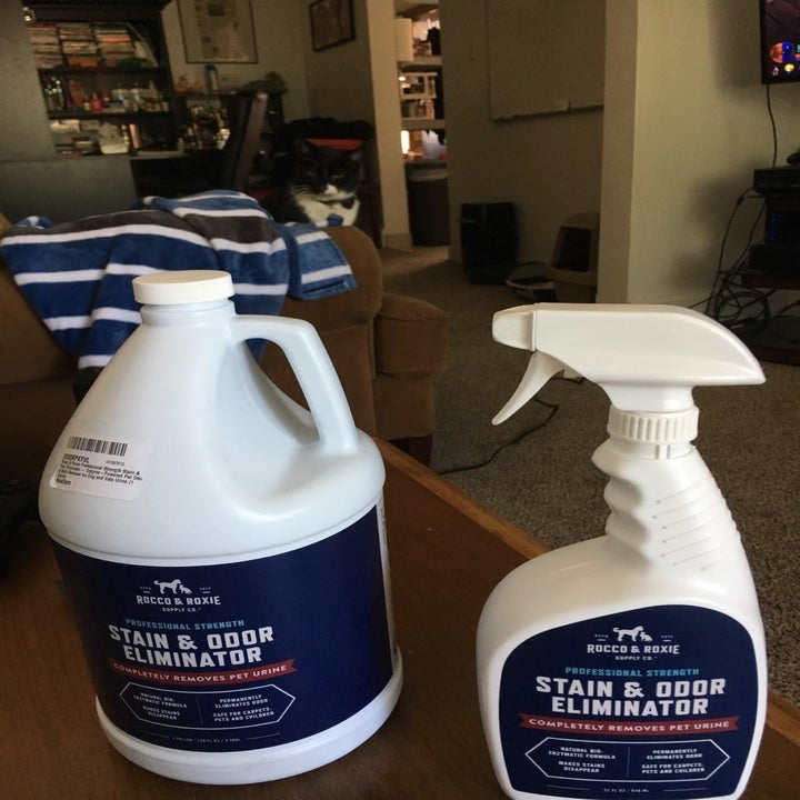 The gallon bottle of the odor remover, which comes in a large jug, along with the smaller 32 oz spray bottle