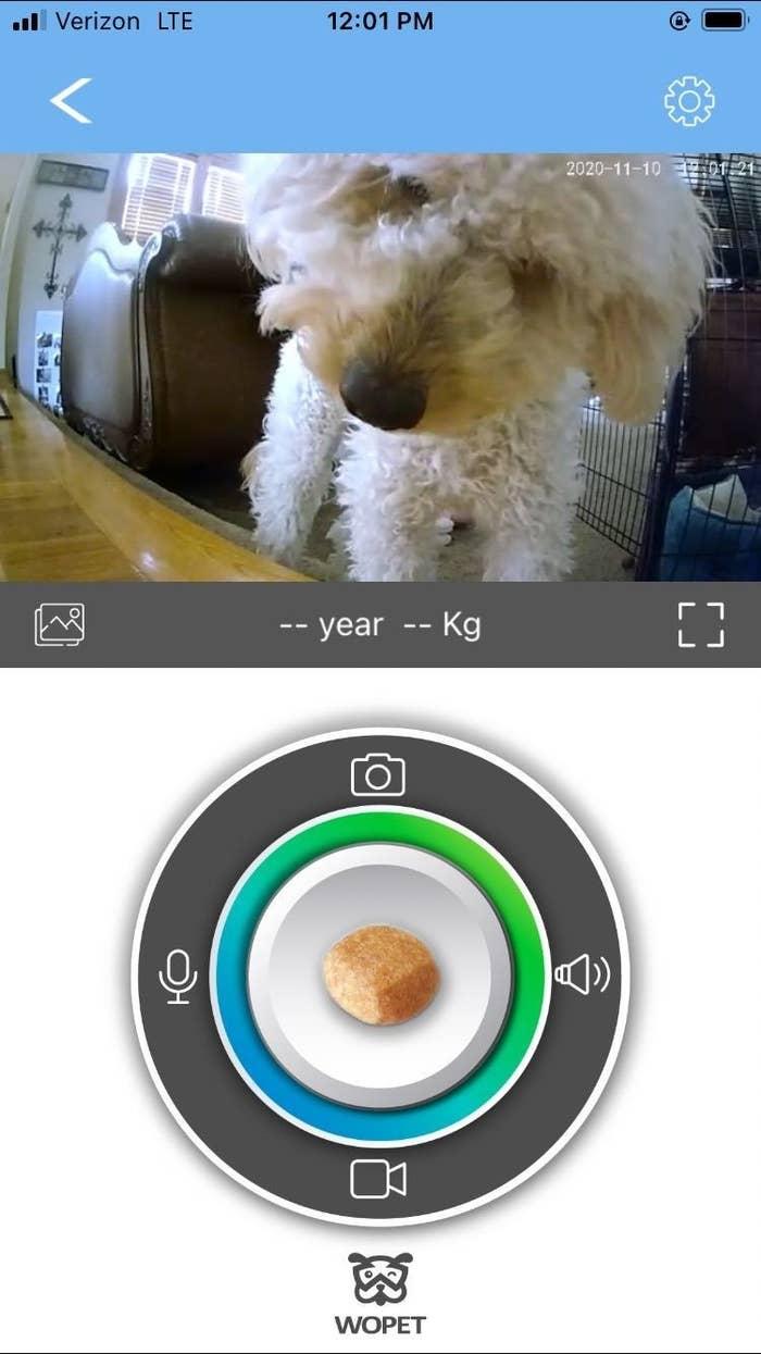 A screenshot using the device app