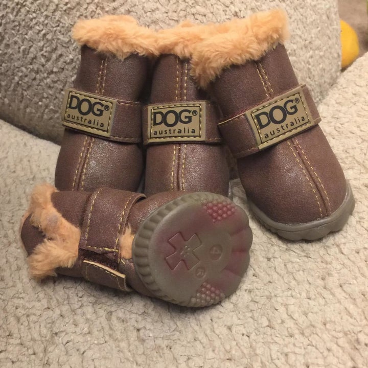 """A reviewer photo of the brown fleece-lined booties with woven labels on each that say """"Dog"""""""
