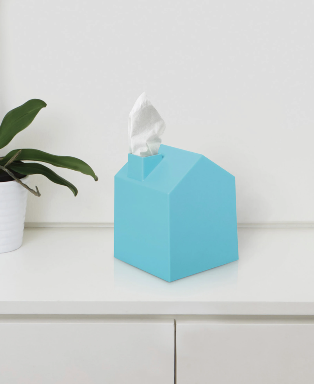 House-shaped tissue box placed on table