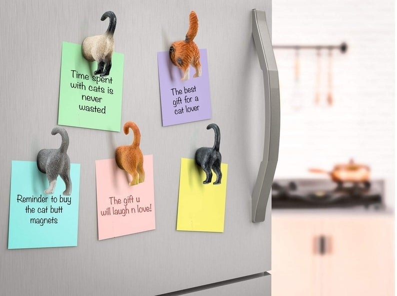 Cat butt magnets holding up sticky notes placed on freezer door