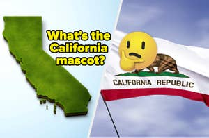 A map of California is on the left labeled,