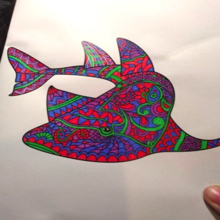 coloring page after being colored in by pack of fine point pens