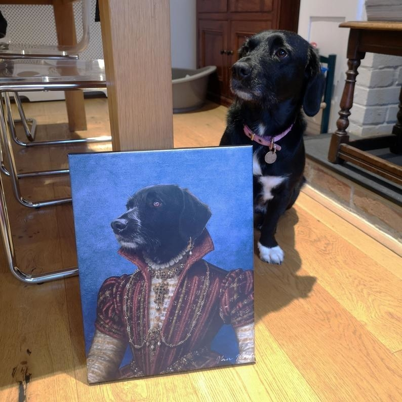 Black and white dog sitting next to its Renaissance portrait