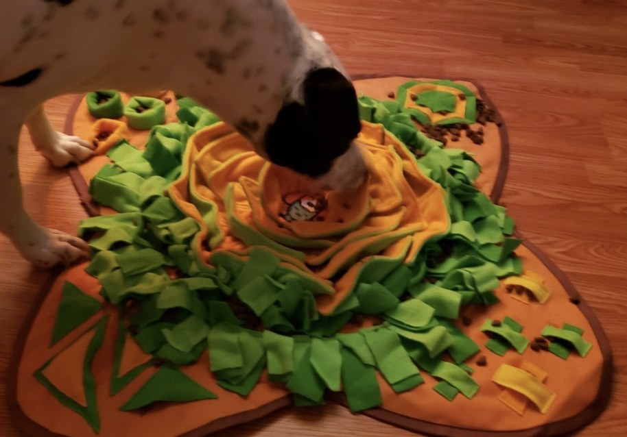 A dog with a snuffle mat
