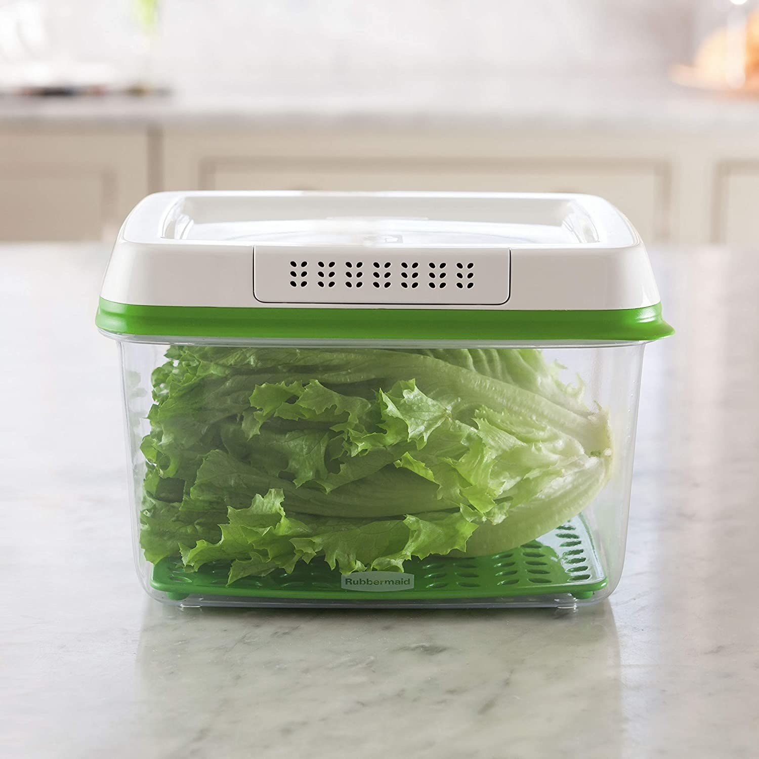 a Rubbermaid container holding fresh lettuce inside
