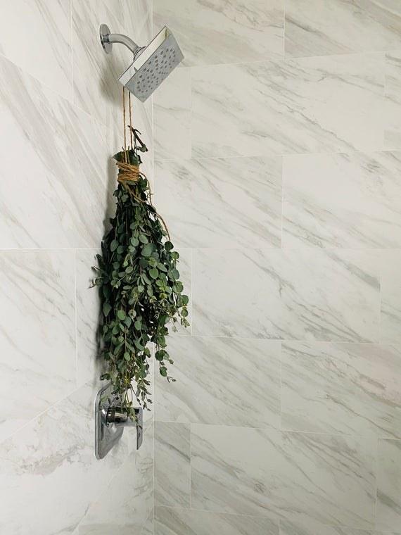 eucalyptus bundle hanging over showerhead