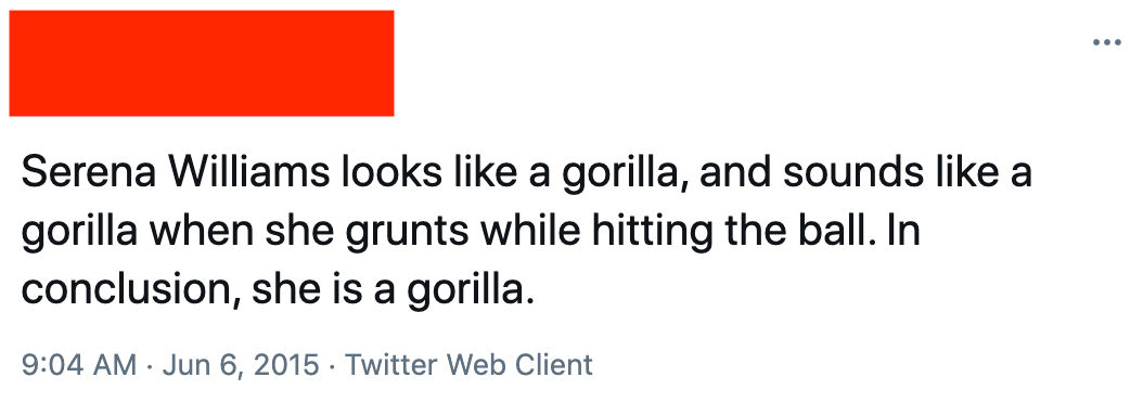 """A Twitter user saying horribly racist things about Serena Williams: """"Serena Williams looks like a gorilla, and sounds like a gorilla when she grunts while hitting the ball"""""""