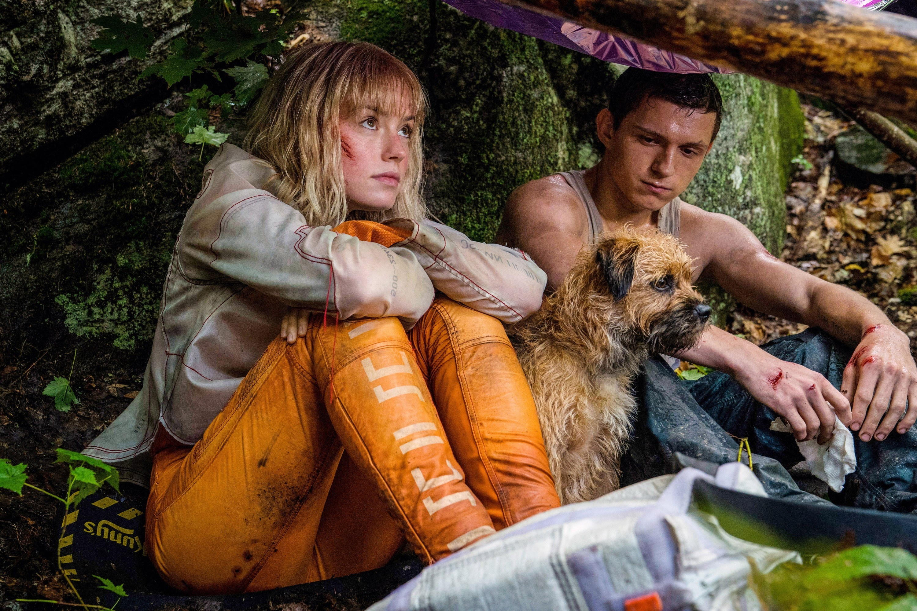 Daisy Ridley and Tom Holland playing Todd and Viola in the movie Chaos Walking. they are both sitting down with their dog manchee in between them in the woods.