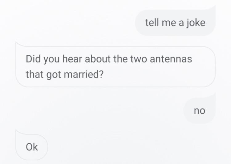 person says tell me a joke and the other person says did you hear abotu the two antennas that got married and the other person says no and they say ok