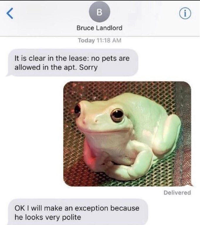 landlord saying no pets in the apartment and the other person sends a nice looking frog and they i saw i will make an exception