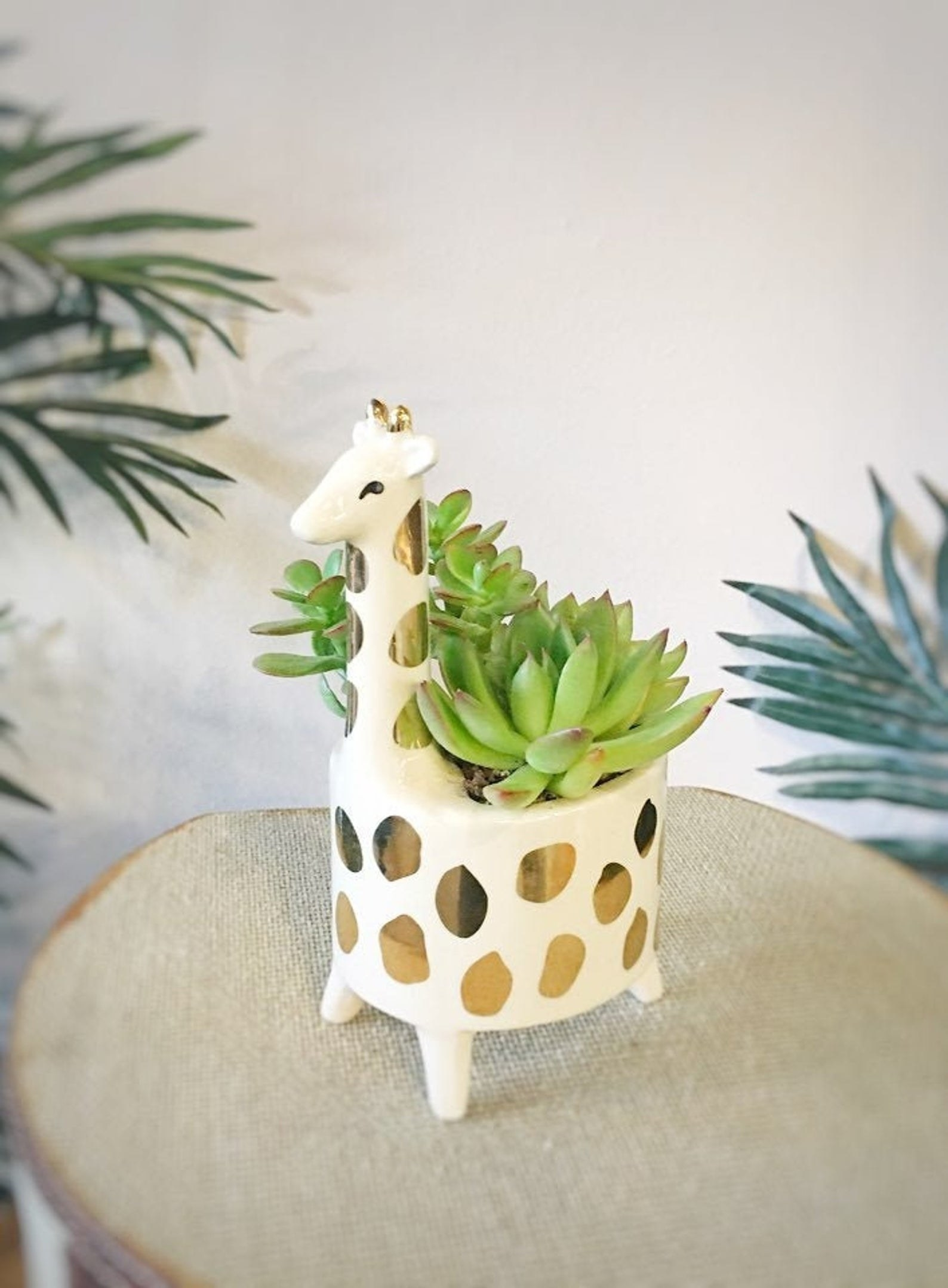 Giraffe-shaped succulent planter placed on table