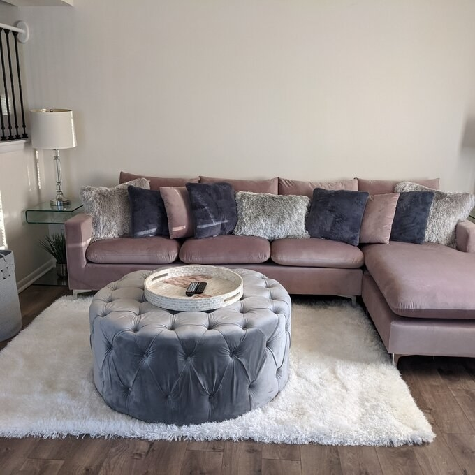 a reviewer's lilac couch