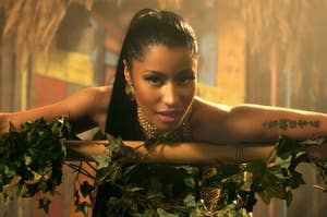anaconda music video