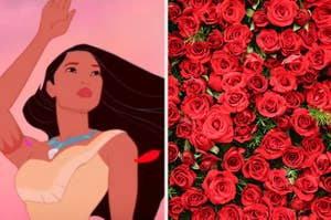 Pocahontas is on the left waving with a pile of roses on the right