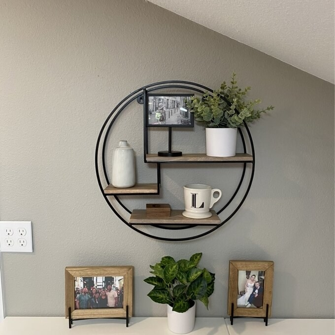 a reviewer's circular shelf holding plants and photos