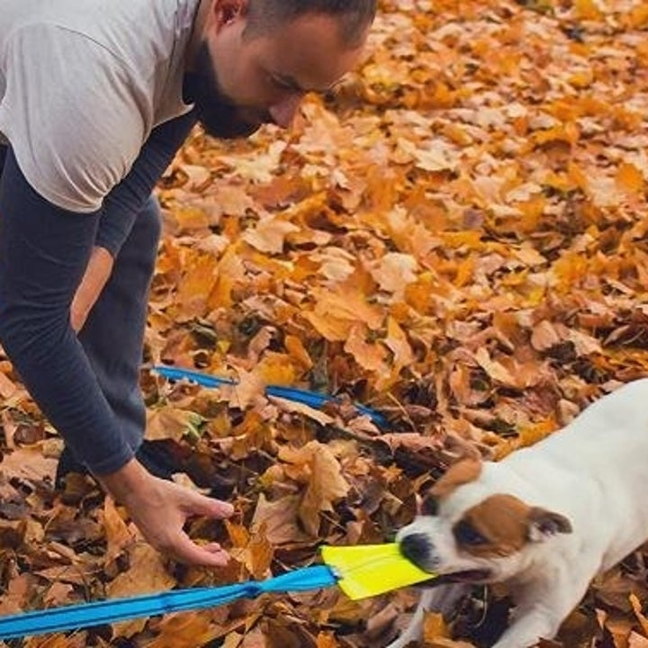 dog and owner in leaves with rope