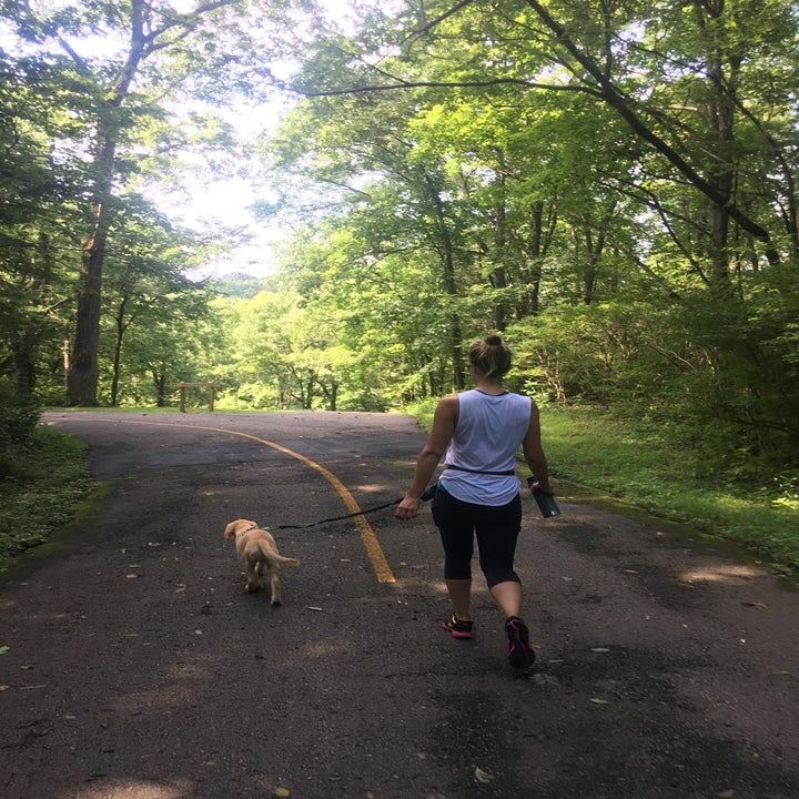 dog and owner in forest walking