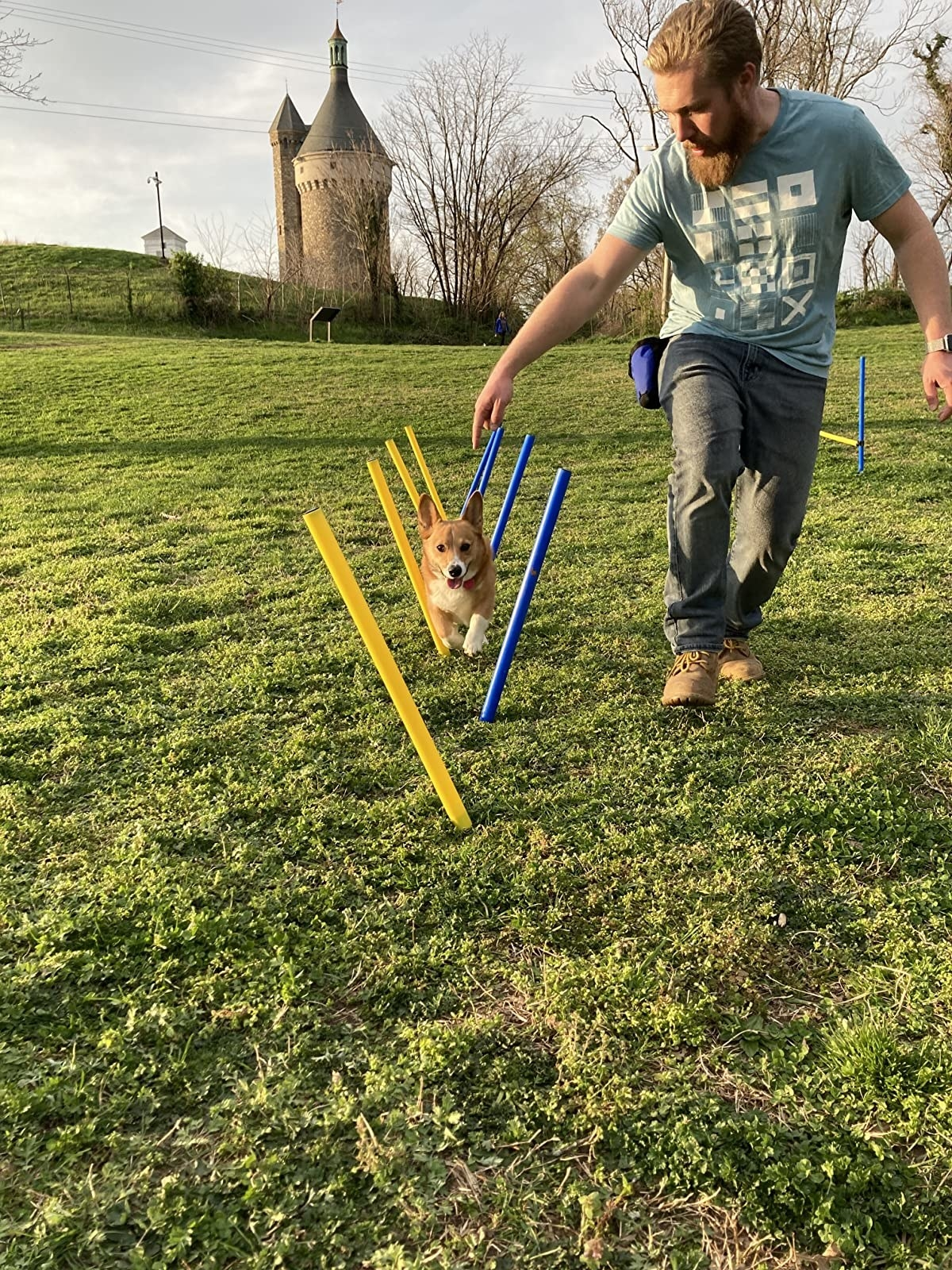 dog and owner playing in grass with obstacle course