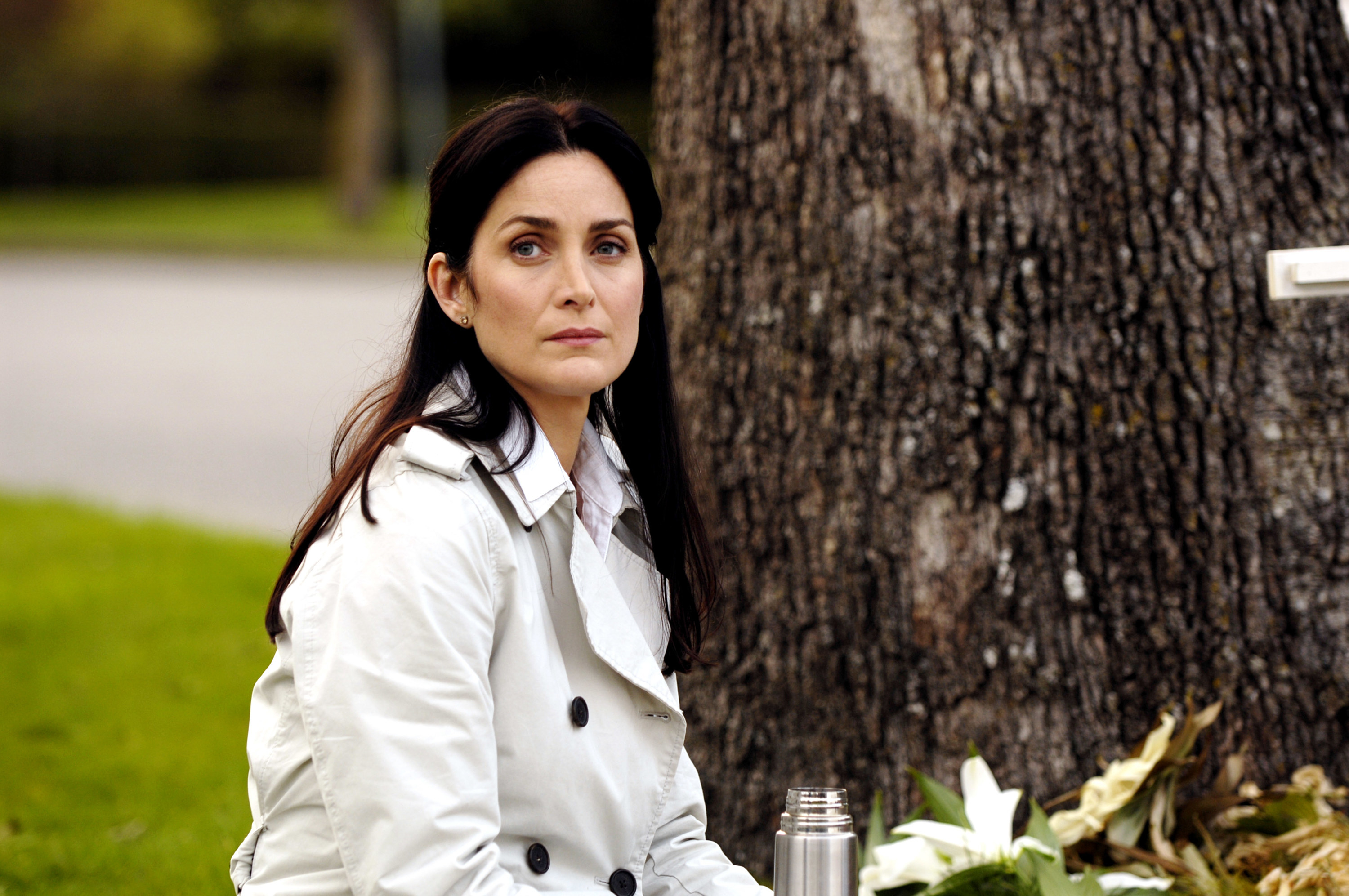 Moss sits by a tree in the film Normal