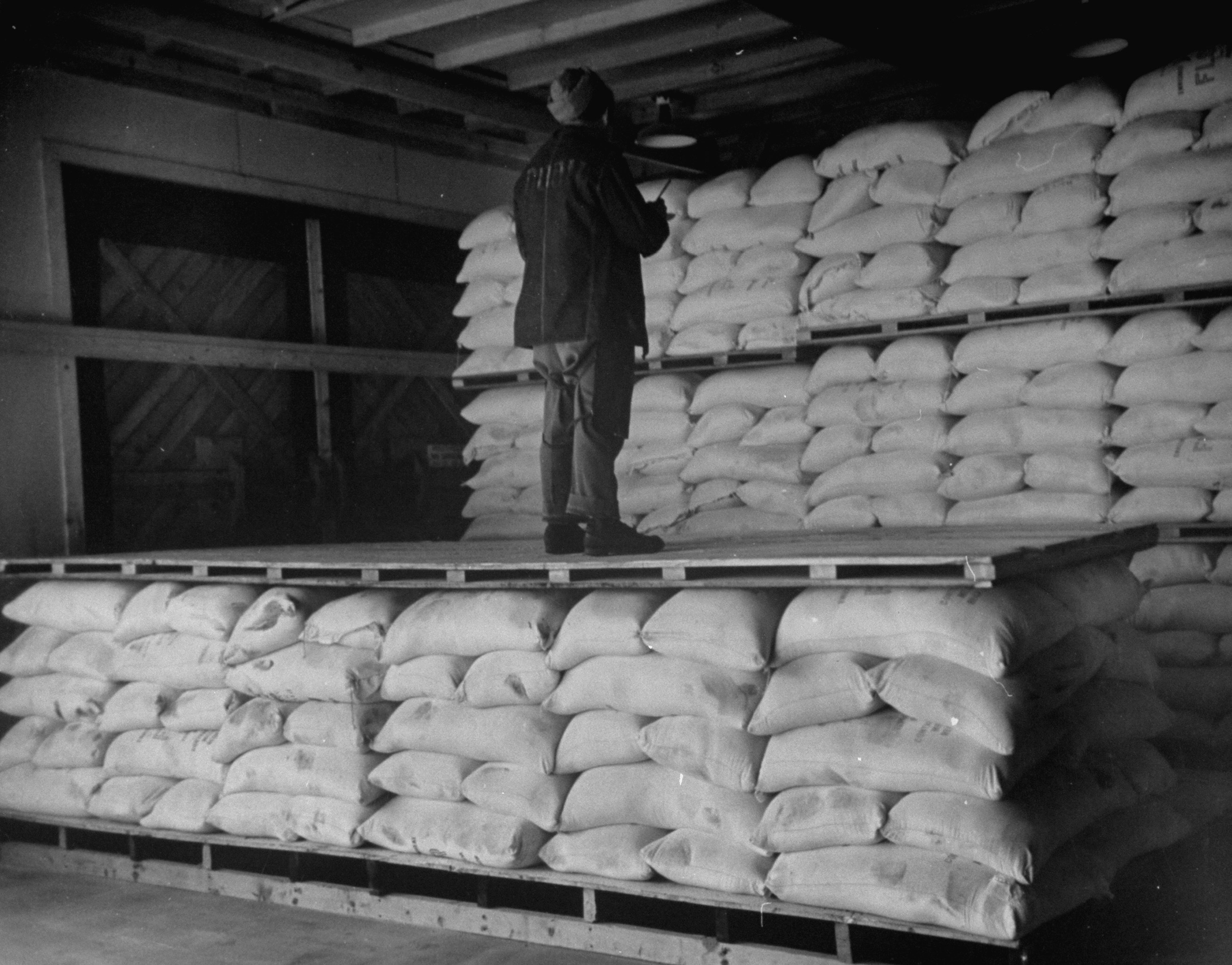 A man stands on bags as he surveys the storage room