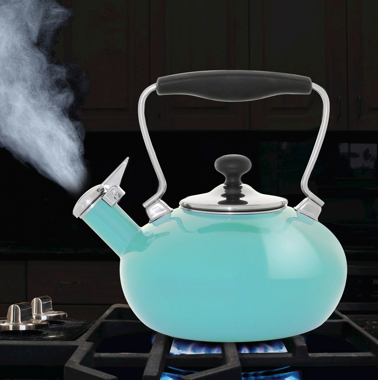 Aqua tea kettle with black and stainless steel details