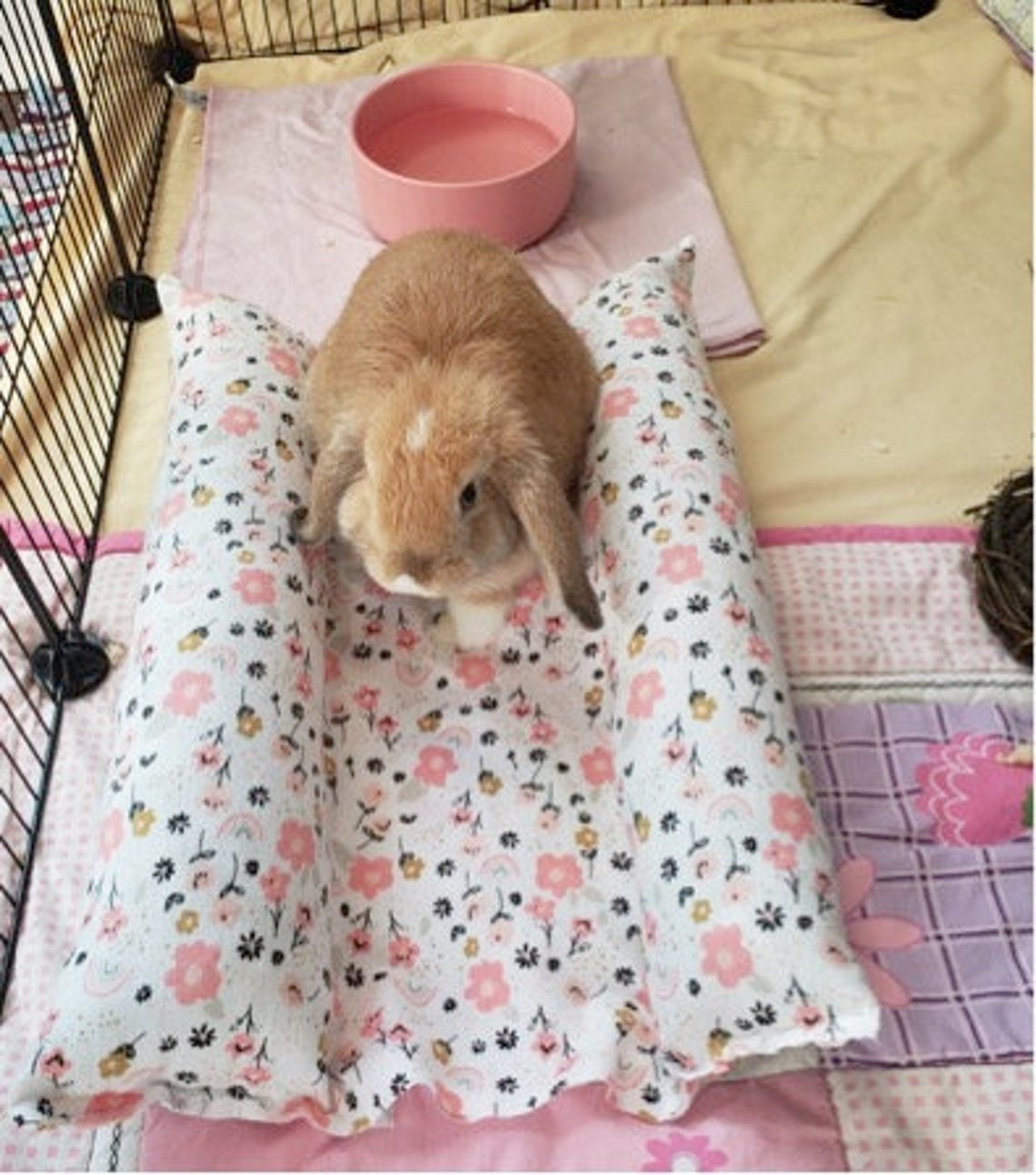 a lop in the white and pink floral rectangular bed with raised sides