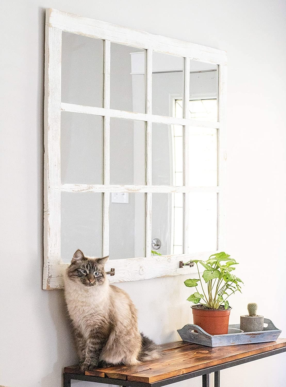 a cat sitting on a ledge underneath a white wooden window pane that's a mirror