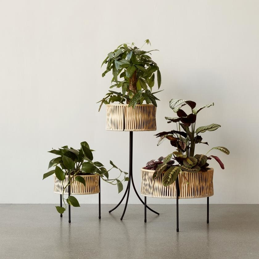 Three circular woven planters in varying heights