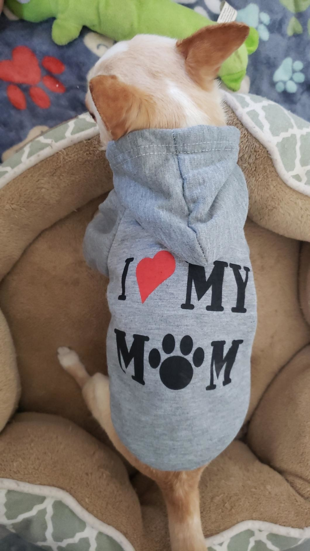 """The sweatshirt, which says """"I [heart] My Mom,"""" in gray"""