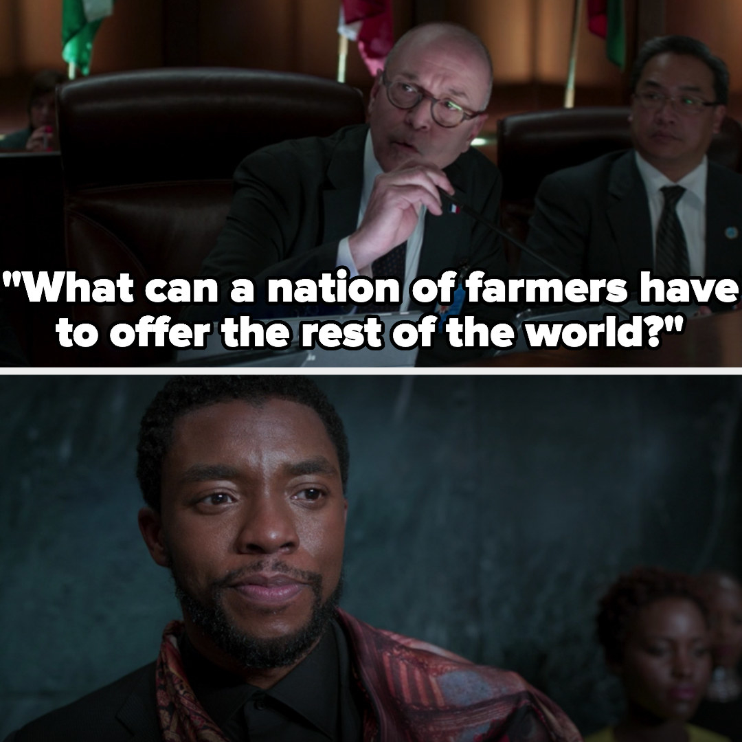 a guy at the UN asks what a nation of farmers can offer the world, and T'Challa just smiles