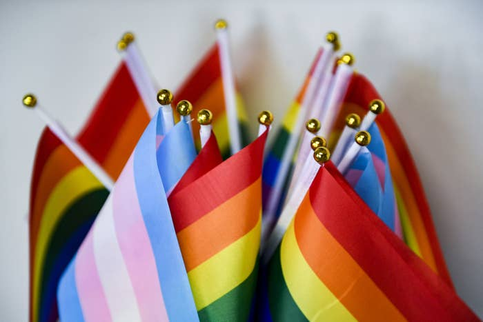 Flags representing the LGBTQ community