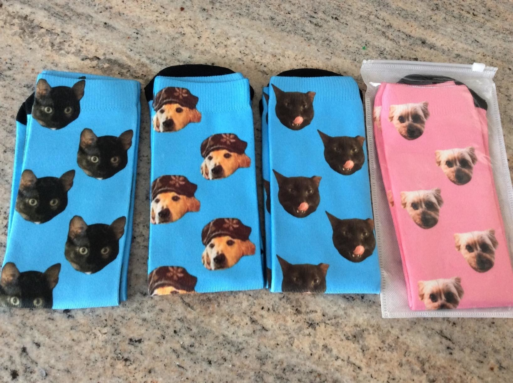The socks in blue and pink, with photo images of dog and cat faces printed in multiples on them